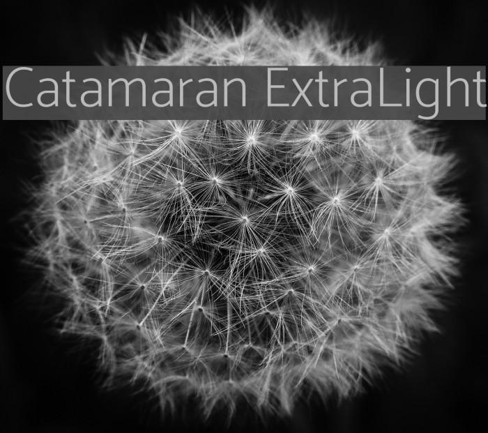 Catamaran ExtraLight Font examples