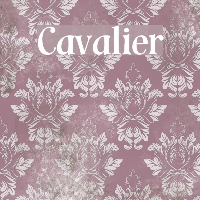Cavalier Font examples