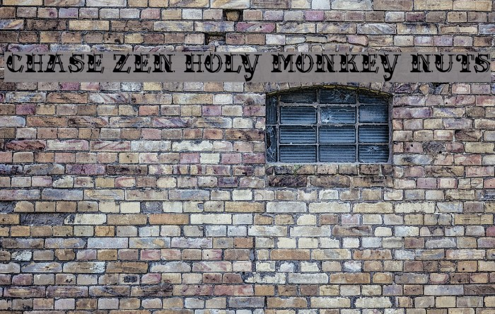 CHASE ZEN HOLY MONKEY NUTS Polices examples