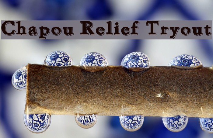 Chapou Relief Tryout Font examples