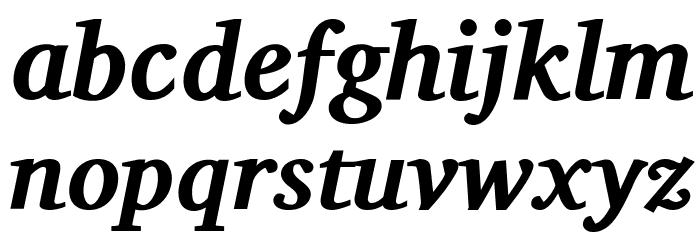 Charis SIL Bold Italic Font Litere mici
