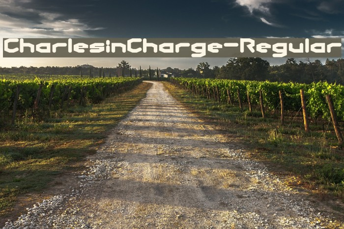 CharlesinCharge-Regular Шрифта examples