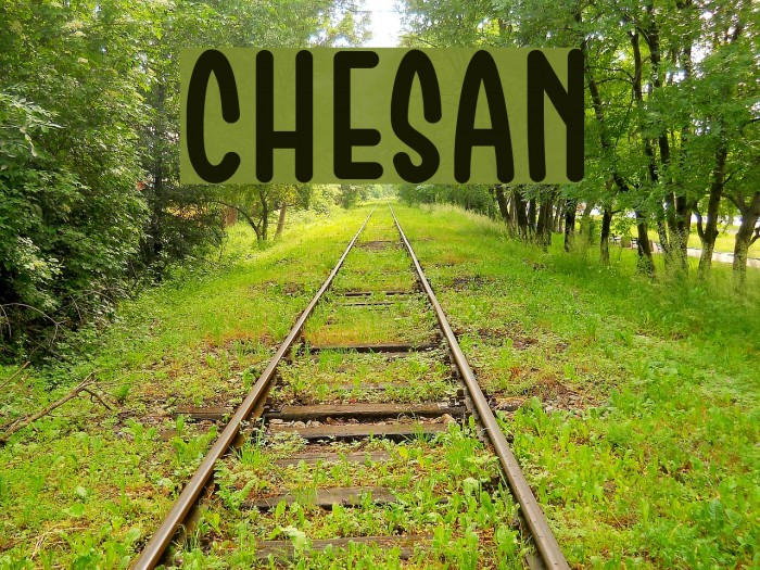 Chesan Font examples