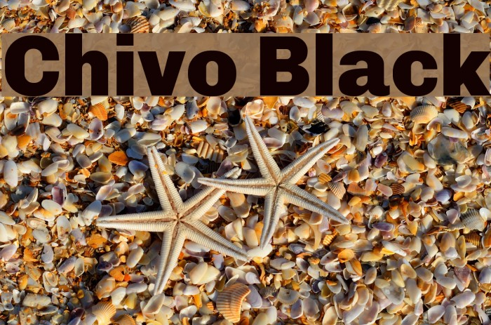 Chivo Black Font examples