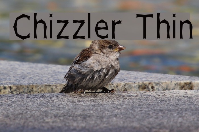 Chizzler Thin Шрифта examples