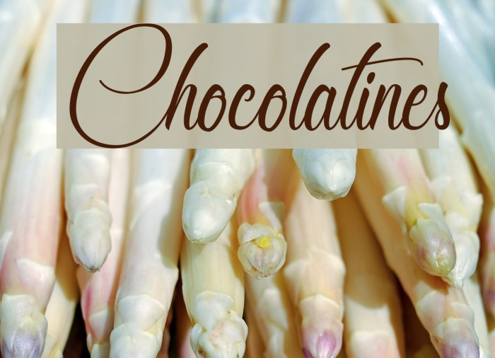 Chocolatines フォント examples
