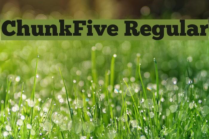 ChunkFive Regular Шрифта examples