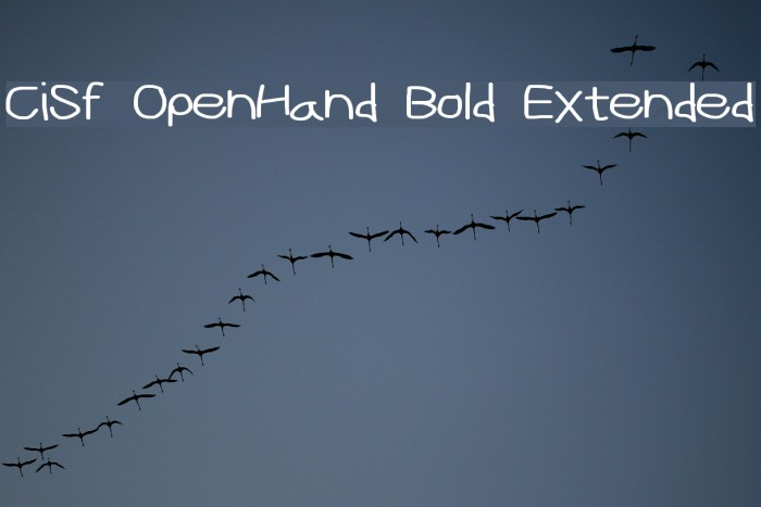 CiSf OpenHand Bold Extended फ़ॉन्ट examples