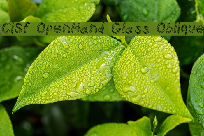 CiSf OpenHand Glass Oblique Font examples