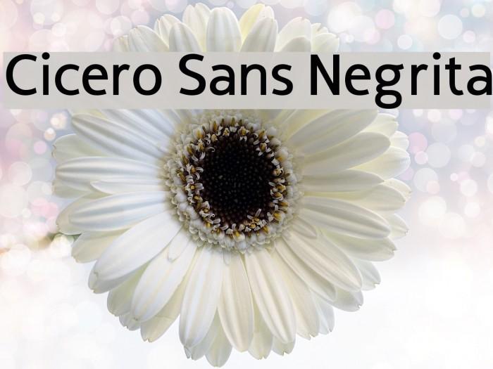 Cicero Sans Negrita फ़ॉन्ट examples