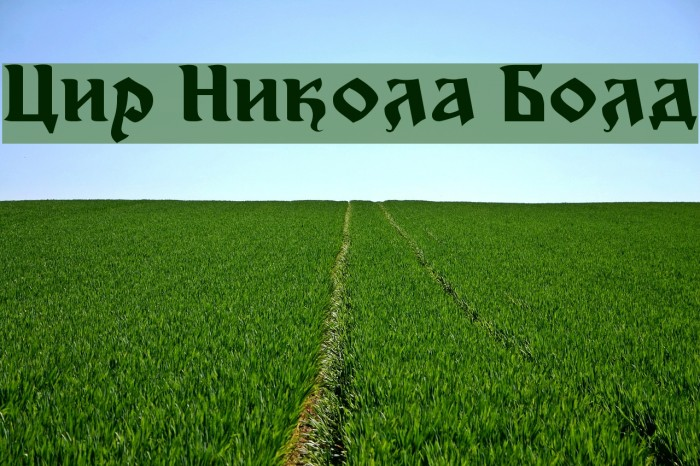 Cir Nikola Bold फ़ॉन्ट examples