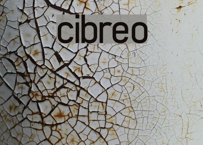 cibreo Font examples
