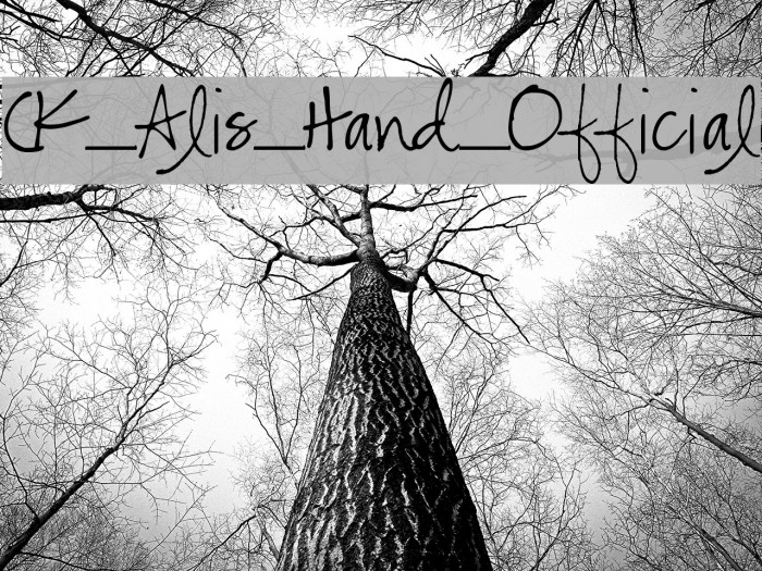 CK_Alis_Hand_Official Font examples
