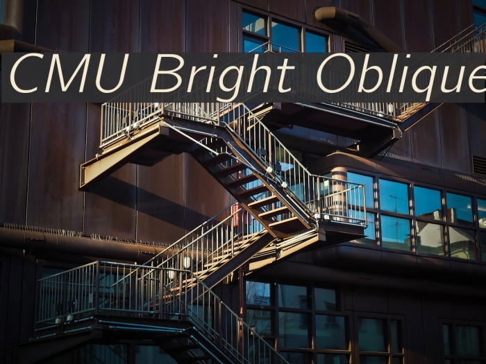 CMU Bright Oblique Polices examples