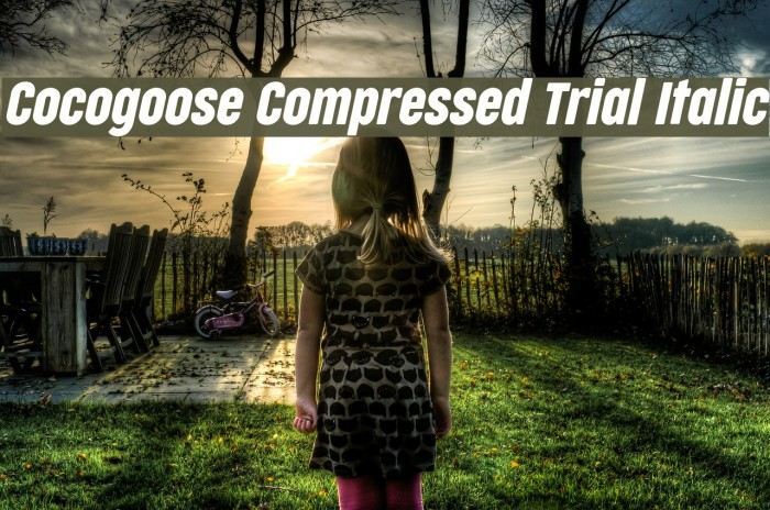Cocogoose Compressed Trial Italic Schriftart examples