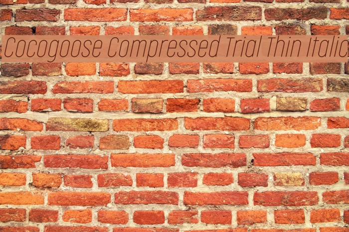 Cocogoose Compressed Trial Thin Italic Schriftart examples
