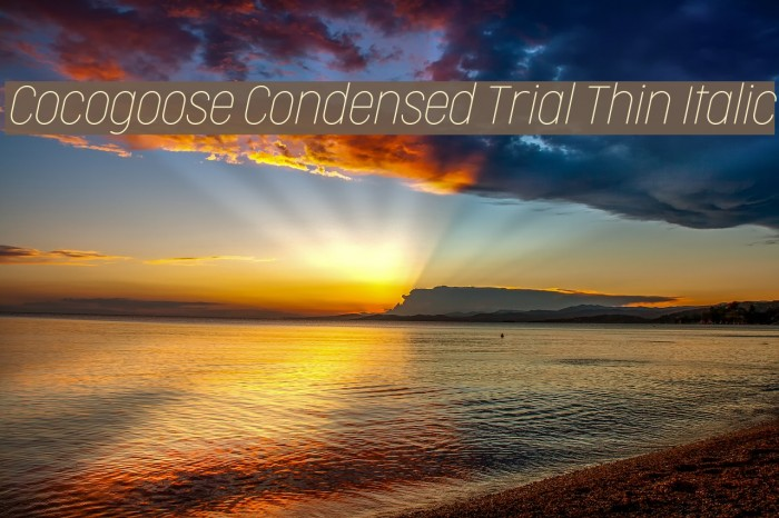 Cocogoose Condensed Trial Thin Italic Schriftart examples