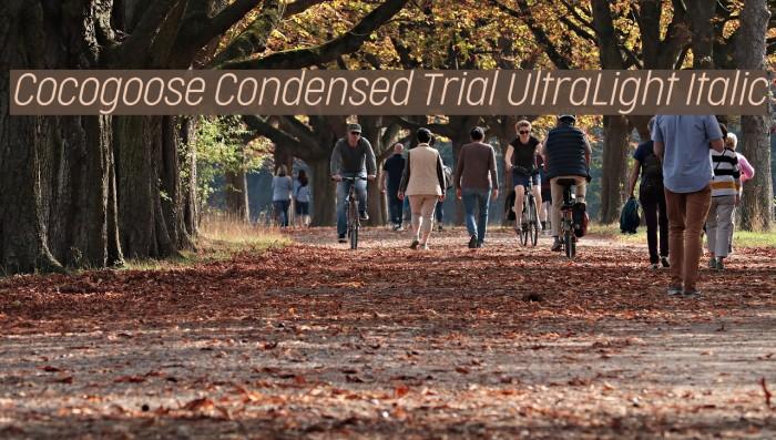 Cocogoose Condensed Trial UltraLight Italic Schriftart examples