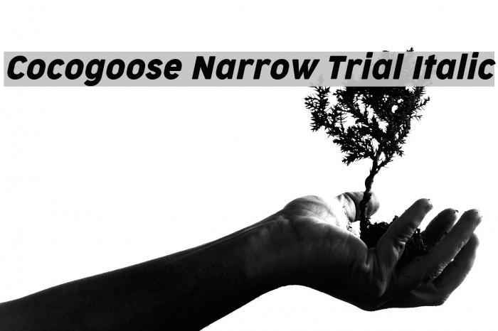 Cocogoose Narrow Trial Italic Schriftart examples