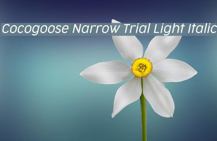 Cocogoose Narrow Trial Light Italic Schriftart examples