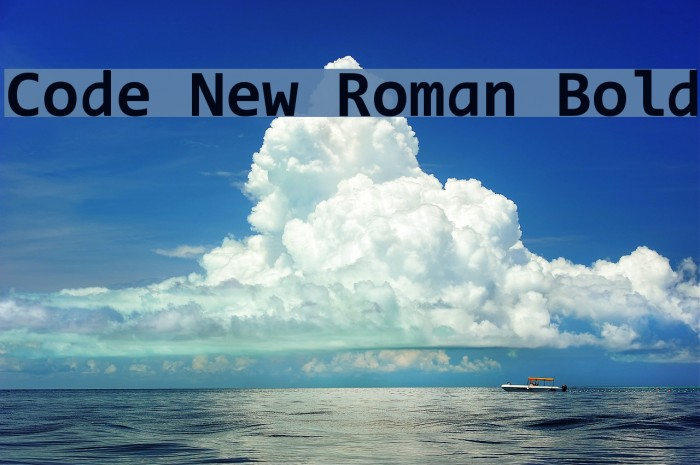 Code New Roman Bold Font examples