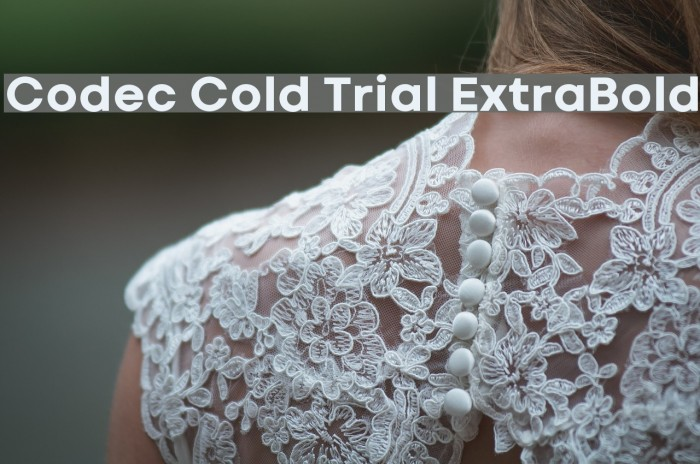 Codec Cold Trial ExtraBold Schriftart examples
