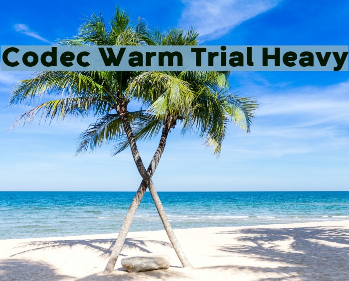 Codec Warm Trial Heavy Schriftart examples