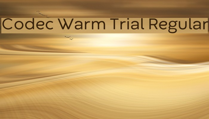 Codec Warm Trial Regular Schriftart examples
