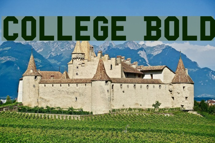 College Bold Font examples