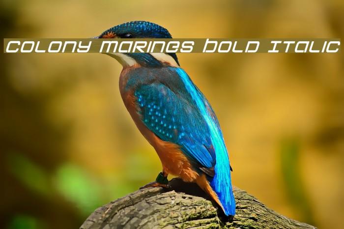 Colony Marines Bold Italic Schriftart examples
