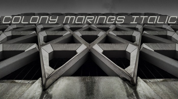 Colony Marines Italic フォント examples
