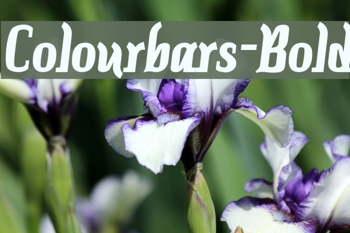 Colourbars-Bold Font examples