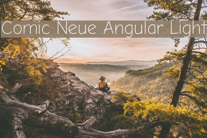 Comic Neue Angular Light 字体 examples