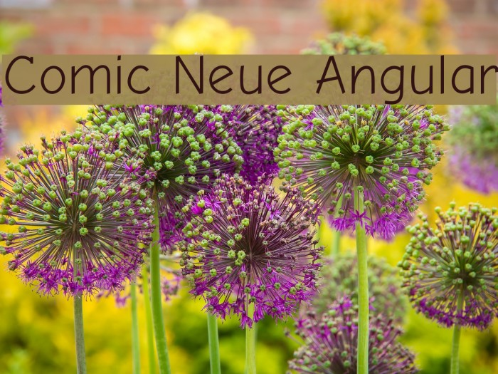 Comic Neue Angular Fuentes examples