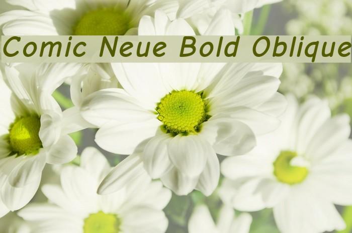 Comic Neue Bold Oblique Font examples