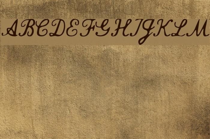 Commercial Script Font examples