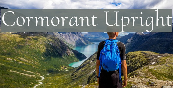 Cormorant Upright Font examples
