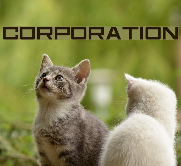 Corporation フォント examples