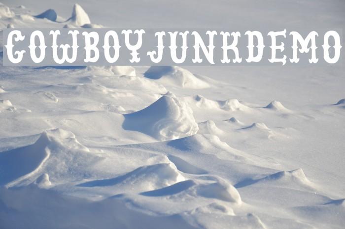 CowboyJunkDEMO Fonte examples