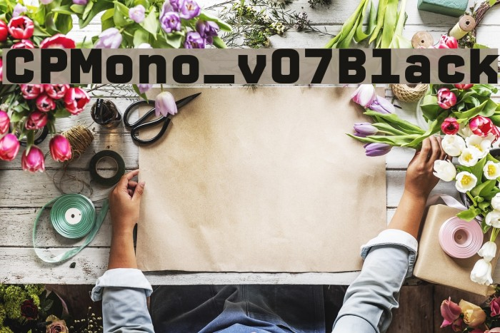 CPMono_v07Black Шрифта examples