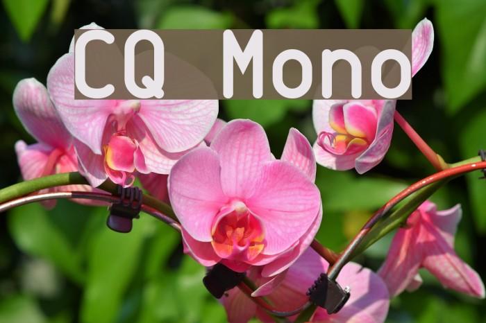 CQ Mono Font examples