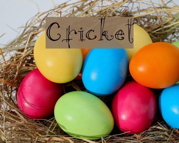 Cricket Font examples
