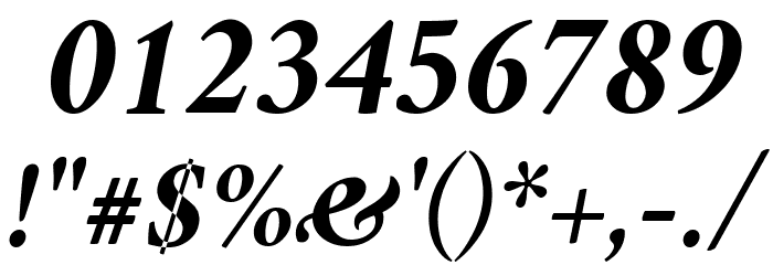 Crimson Bold Italic Font OTHER CHARS
