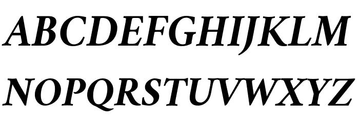 Crimson Bold Italic Font UPPERCASE