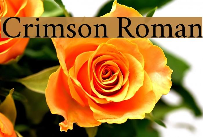 Crimson Roman Font examples