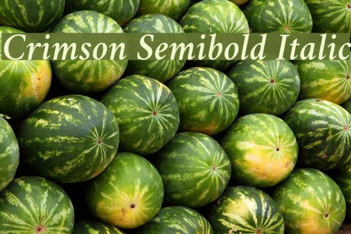 Crimson Semibold Italic Font examples