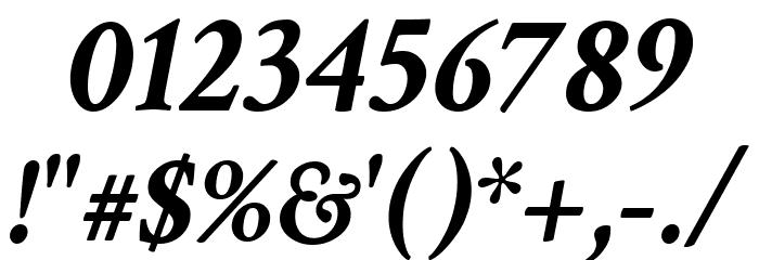 Crimson Text Bold Italic Font Alte caractere