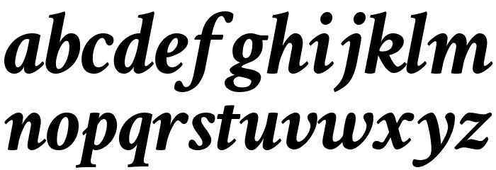 Crimson Text Bold Italic Font Litere mici
