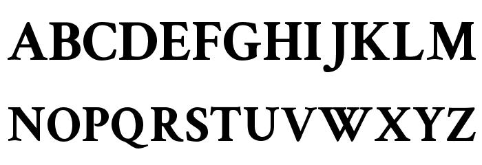 Crimson Text Bold Font Litere mari