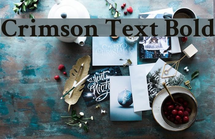 Crimson Text Bold Font examples